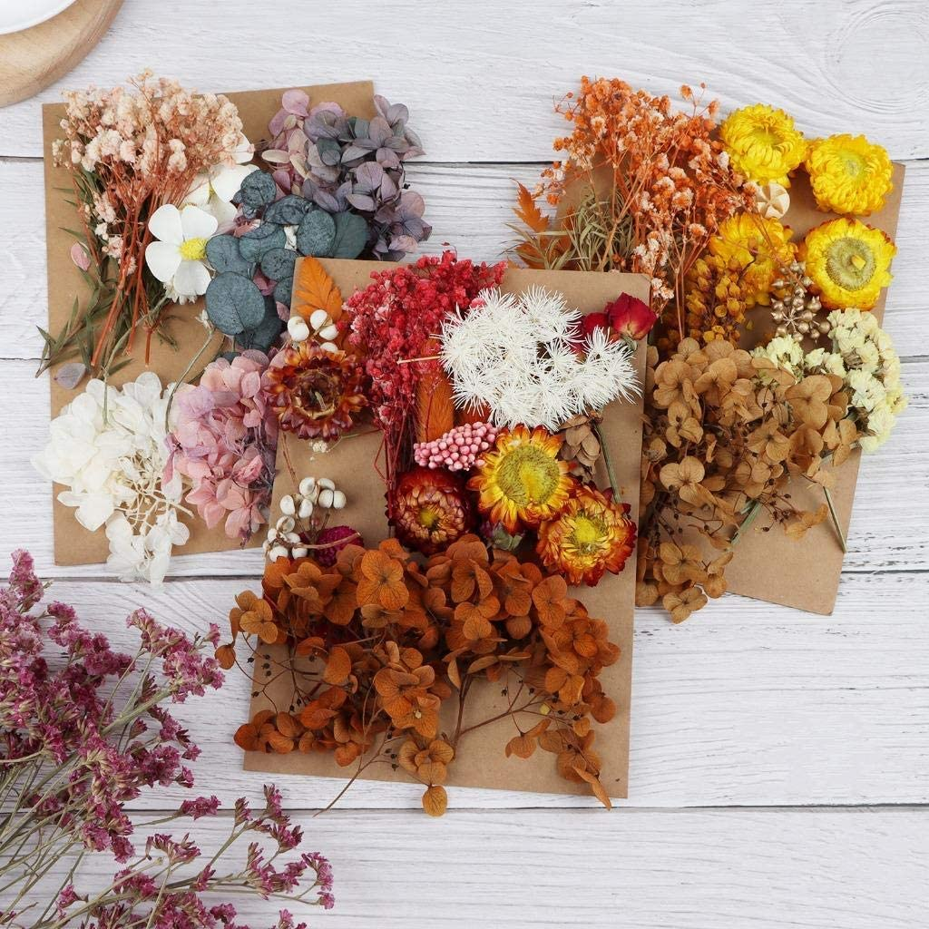 Wusteg 3 Sets Natural Dried Flowers Leaves Mixed Natural Dry Flowers Multiple Natural Pressed Flowers for Scrapbooking DIY Candle Resin Jewelry Pendant Crafts