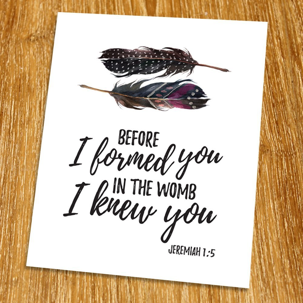 Jeremiah 1:5 Before I formed you in the womb, I knew you Print (Unframed), Watercolor feather, Scripture Art, Bible Verse Print, Christian Wall Art, Motivational Poster, 8x10'', TC-020