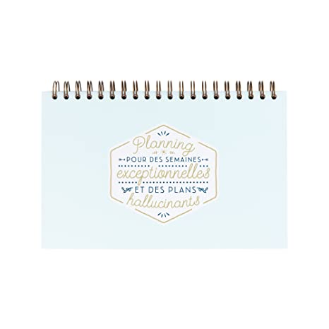 Amazon.com : Mr. Wonderful woa08522fr Planner for ...