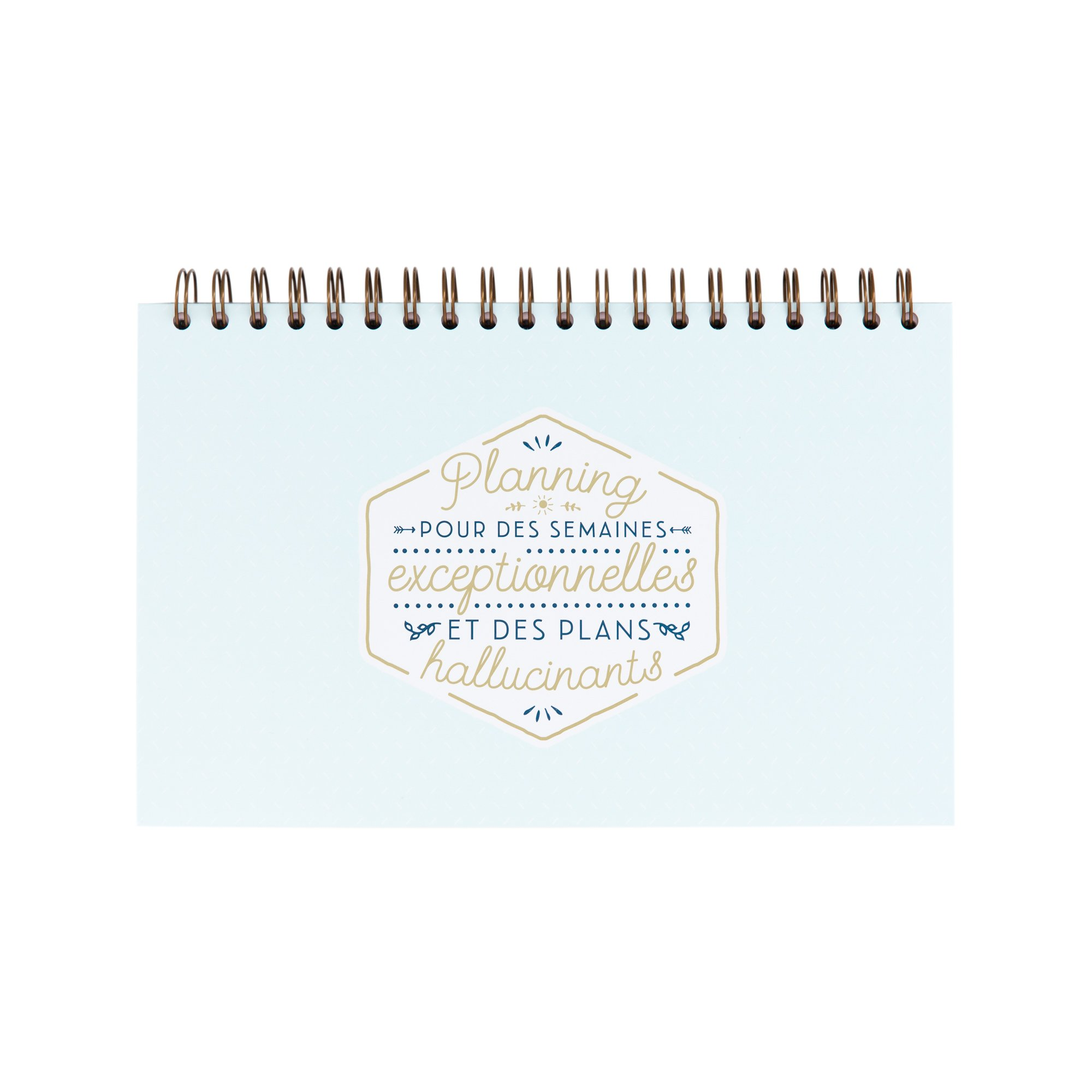 Mr. Wonderful woa08522fr Planner for Exceptional Weeks and Plans hallucinants
