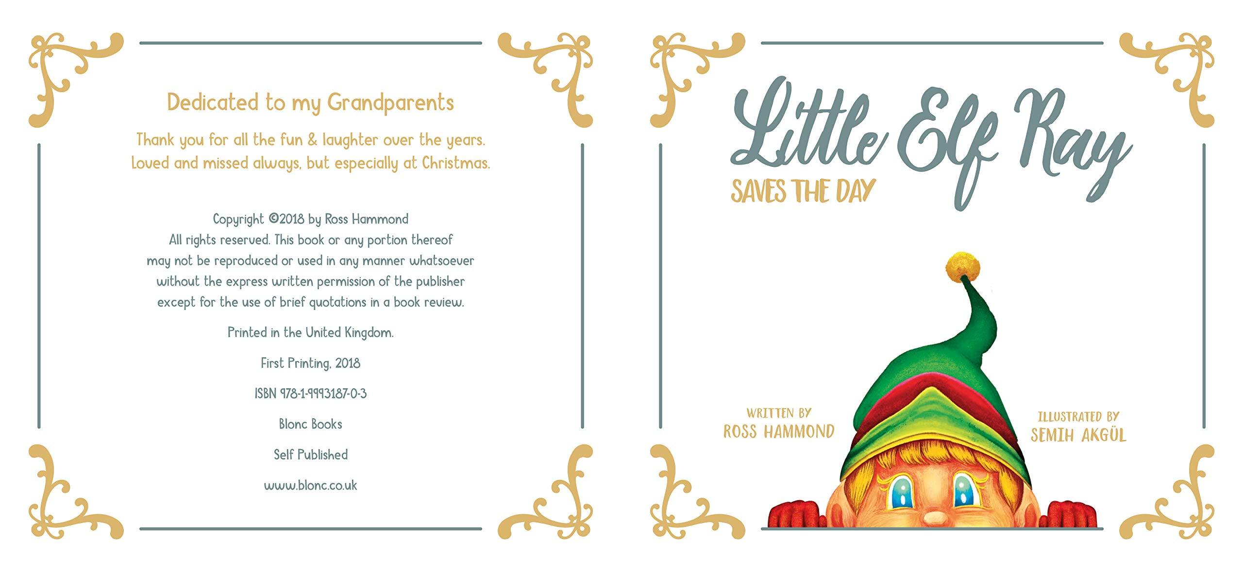 Little Elf Ray - Saves The Day: Amazon.co.uk: Ross Hammond, Semih ...