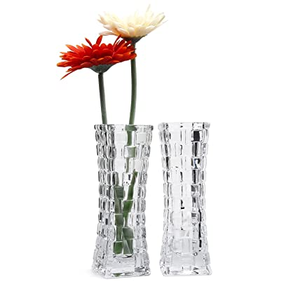 Rachels Choice 17.9cm Alto Jarrón de Cristal Diseño de ratán Transparente Botella de Flores Paquete