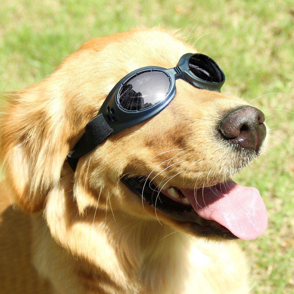 Mihachi Dog Sunglasses UV Protective Windproof Anti-fog Goggles for Pet Black