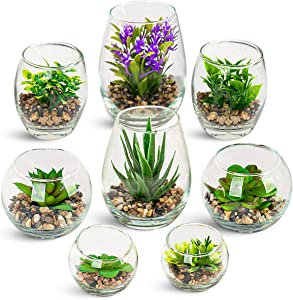 UMEIED Artificial Succulents Plants in Glass Planter, 8 Pack Fake Desk Plants Set for Bathroom, Indoor, Office Decor