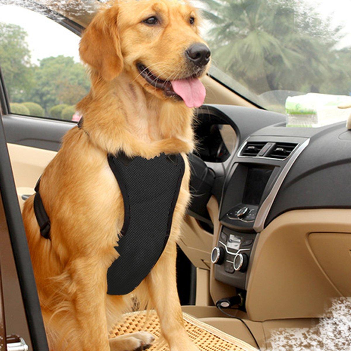 EAST-BIRD Dog Safety Vest Harness with Safety Belt for Most Car, Travel Strap Vest with Car Seat Belt Lead Adjustable Lightweight and Comfortable (XL, Black)