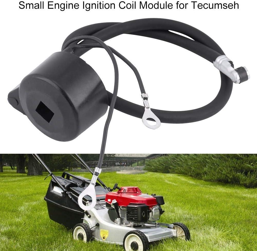 module de bobine dallumage de petit moteur pour 30560A 29632 30546 610768 611038 moteur Bobine dallumage de moteur Suuonee