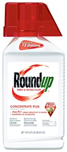 Roundup Weed and Grass Killer Concentrate Plus, 36.8-Ounce