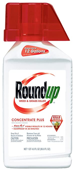 Roundup Weed And Grass Killer Concentrate Plus 368 Ounce