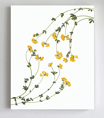 Pressed Flower Bouquet Farmhouse Style Pressed Flowers Poster Botanical Print