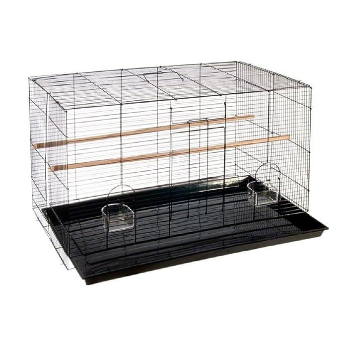 Pequeña jaula para pájaros para canarios, Budgies, zebras: Amazon ...