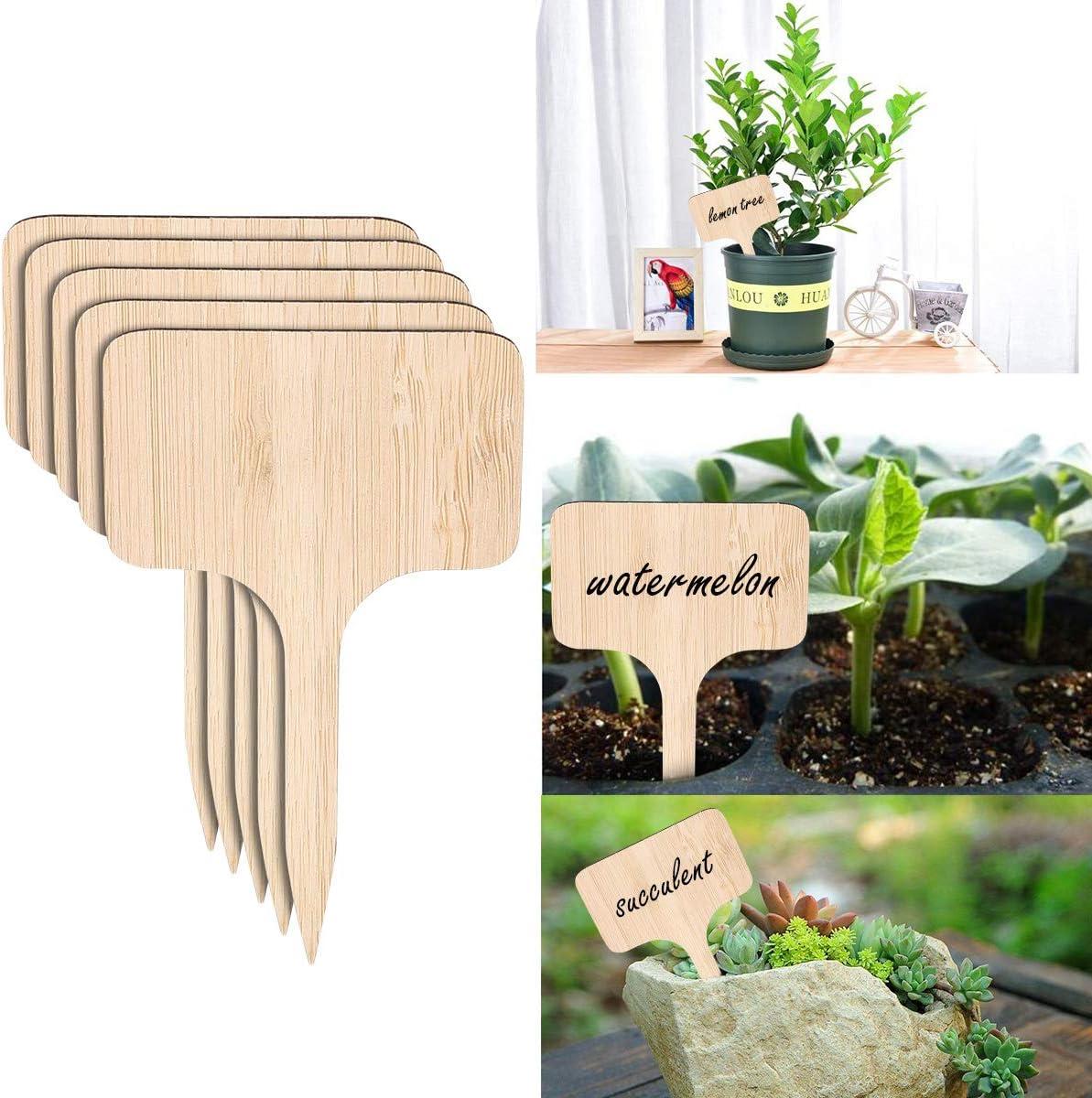 Josopa 50Pcs /Étiquettes de Plantes de Bambou avec Bonus Un Stylo Marqueur Marqueurs de Jardin Potager /Étiquettes de Plantes pour Graines en Pot Herbes Fleurs L/égumes