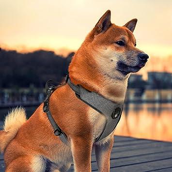 Siivton Arnés para perro, ajustable reflectante, sin tirones, con ...