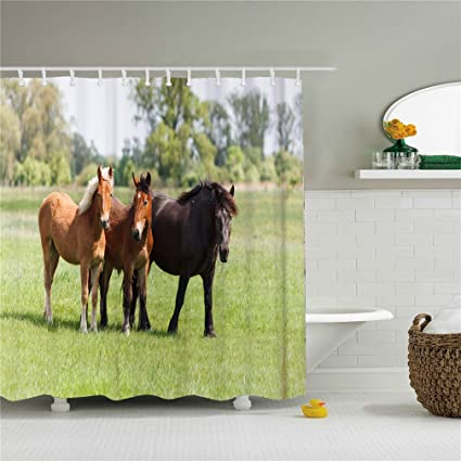 Fabric Shower Curtain Horse