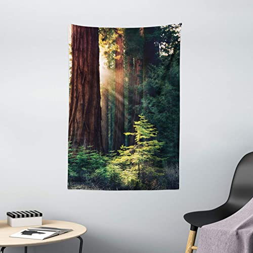 Ambesonne National Parks Tapestry, Morning Sunlight in Wilderness Yosemite Sierra Nevada United States Nature, Wall Hanging for Bedroom Living Room Dorm Decor, 40 X 60 , Green Brown