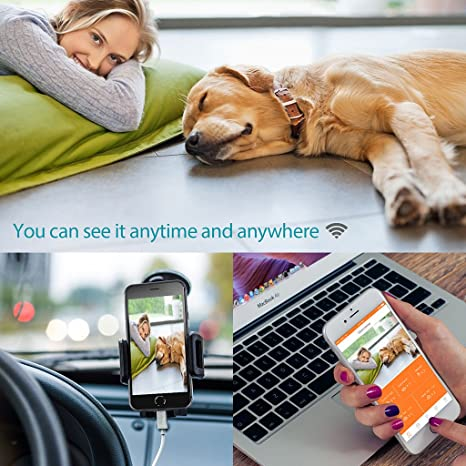 Amazon.com: Automatic Pet Feeder Video/Audio Smart Food Dispenser for Dogs & Cats Portion Control & Voice Recording Pet Feeder: Sports & Outdoors