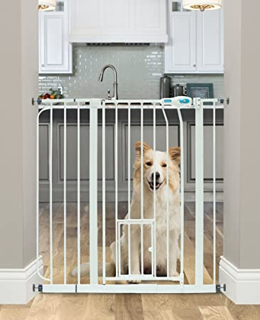 Amazoncom Carlson Extra Wide Walk Through Pet Gate With Small Pet