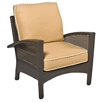Surprising Amazon Com Woodard Trinidad Lounge Chair W Complete Squirreltailoven Fun Painted Chair Ideas Images Squirreltailovenorg
