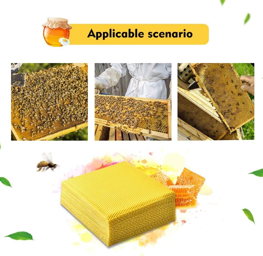 FYBlossom 10 placas de cera de abeja para velas color amarillo 9 x 13 mm