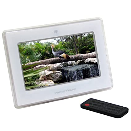 Amazon.com : CTA Digtal 7-Inch Clear Digital Picture Frame : Camera ...