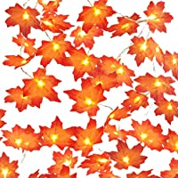Herefun Hojas de Otoño, 6M 40Leds Guirnaldas Luminosas Hoja de Arce Artificial, Luces Decoracion Halloween, Hoja de Arce…