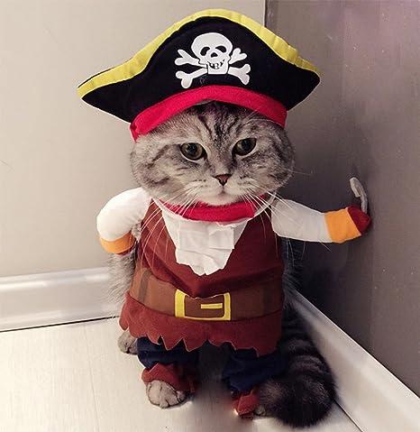 Hillento Traje de Mascota, Divertido Perro Mascota Gato Ropa de Pirata Traje de Suite para Halloween Navidad Vestido de Fiesta Cosplay, Ropa de Fiesta Ropa para Gato Perro: Amazon.es: Productos para mascotas
