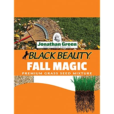 Jonathan Green Fall Magic Grass Seed, 25-Pound : Grass Plants : Garden & Outdoor