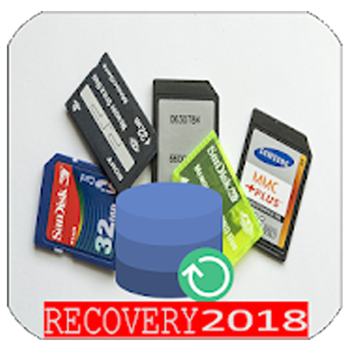 SD Card Data Recovery