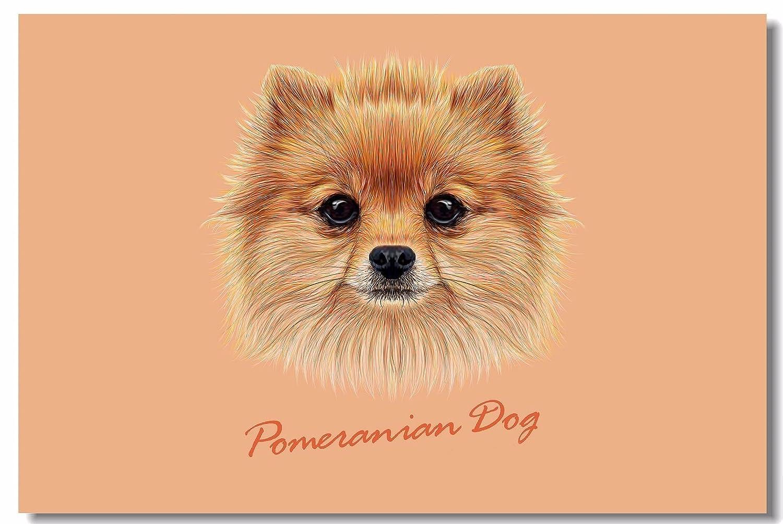Amazon com: SmartWallStation 1x Poster Dog Husky Chihuahua