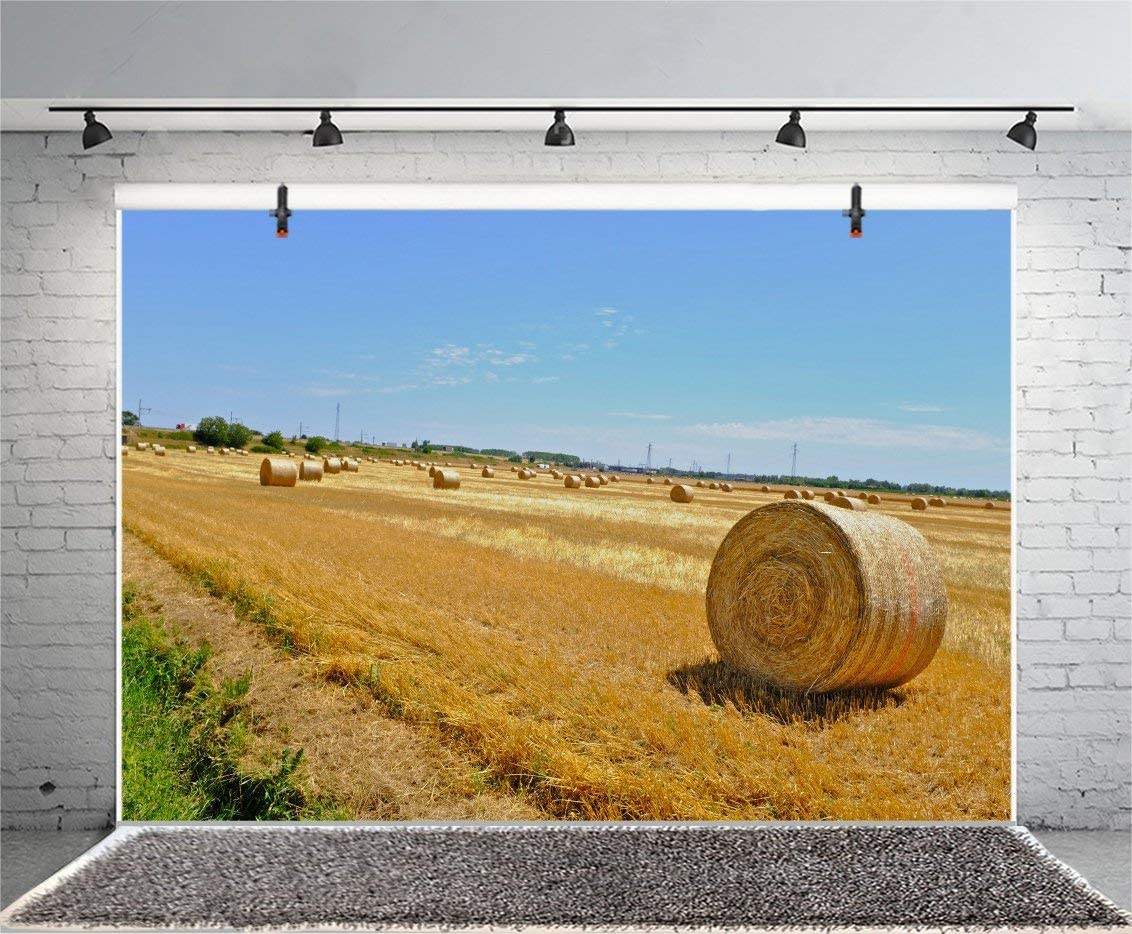 Hay Bale Straw Stack Photography Background 7x5ft Polyester Photo Backdrop Wheat Stack Wheat Field Farm Agriculture Farmland Countryside Hay Wheel Heavest Rural Field Backdrop Blue Sky