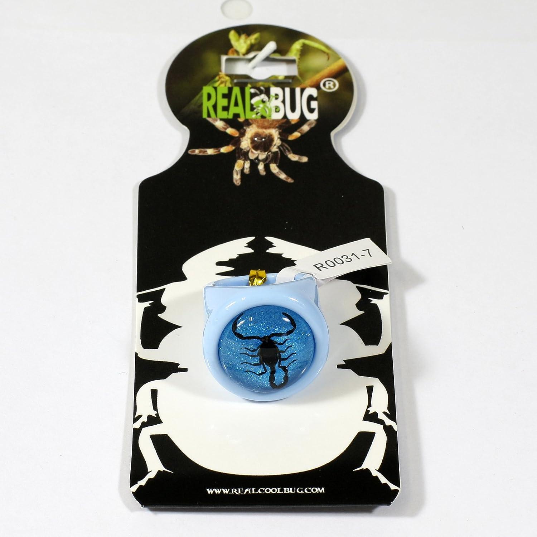 Black Scorpion Blue Ring Size 6