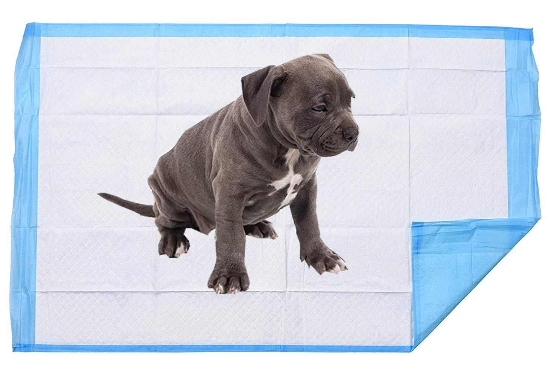 Gspirit Empapadores de adiestramiento para Perros, 50 Piezas Ultra Absorbente & Durable Pet Pad 45x33 cm: Amazon.es: Productos para mascotas