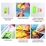 XPCARE 6 Pack 5d Diamond Painting Kits Full Drill