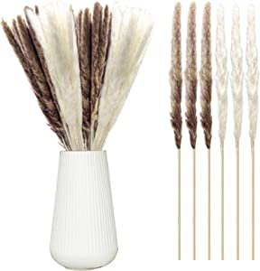 Iceyyyy 30 Stems Natural Dried Pampas Grass, 16.5 Inch Dried Reed Plumes, Phragmites Communis Dried Grasses Bundle for Home Decor, Wedding Decorative Flower Bunch (Brown and White)