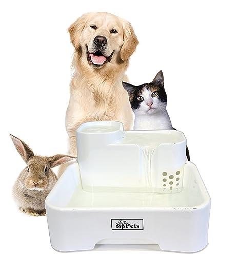 Amazon.com: toppets Automatic Pet filtrada potable Fuente de ...