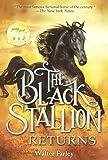 The Black Stallion Returns (Turtleback School & Library Binding Edition)