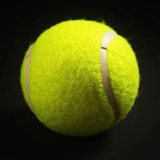 Championship Tennis 2019 App