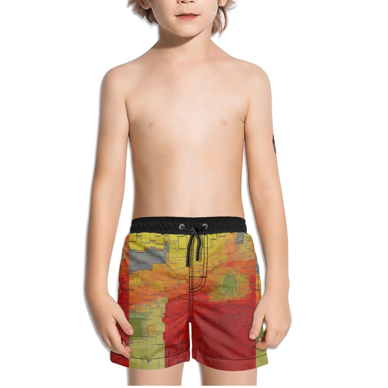 Ouxioaz Boys Swim Trunk Cityscape Abstraction Art Beach Board Shorts