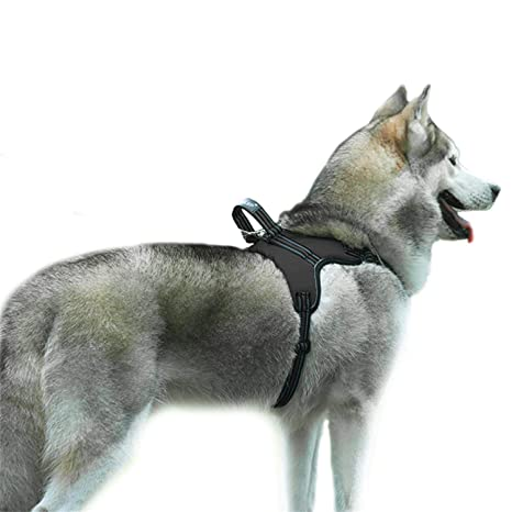 Hishiny No de Pull arnés del Perro Transpirable Pecho Vajilla ...