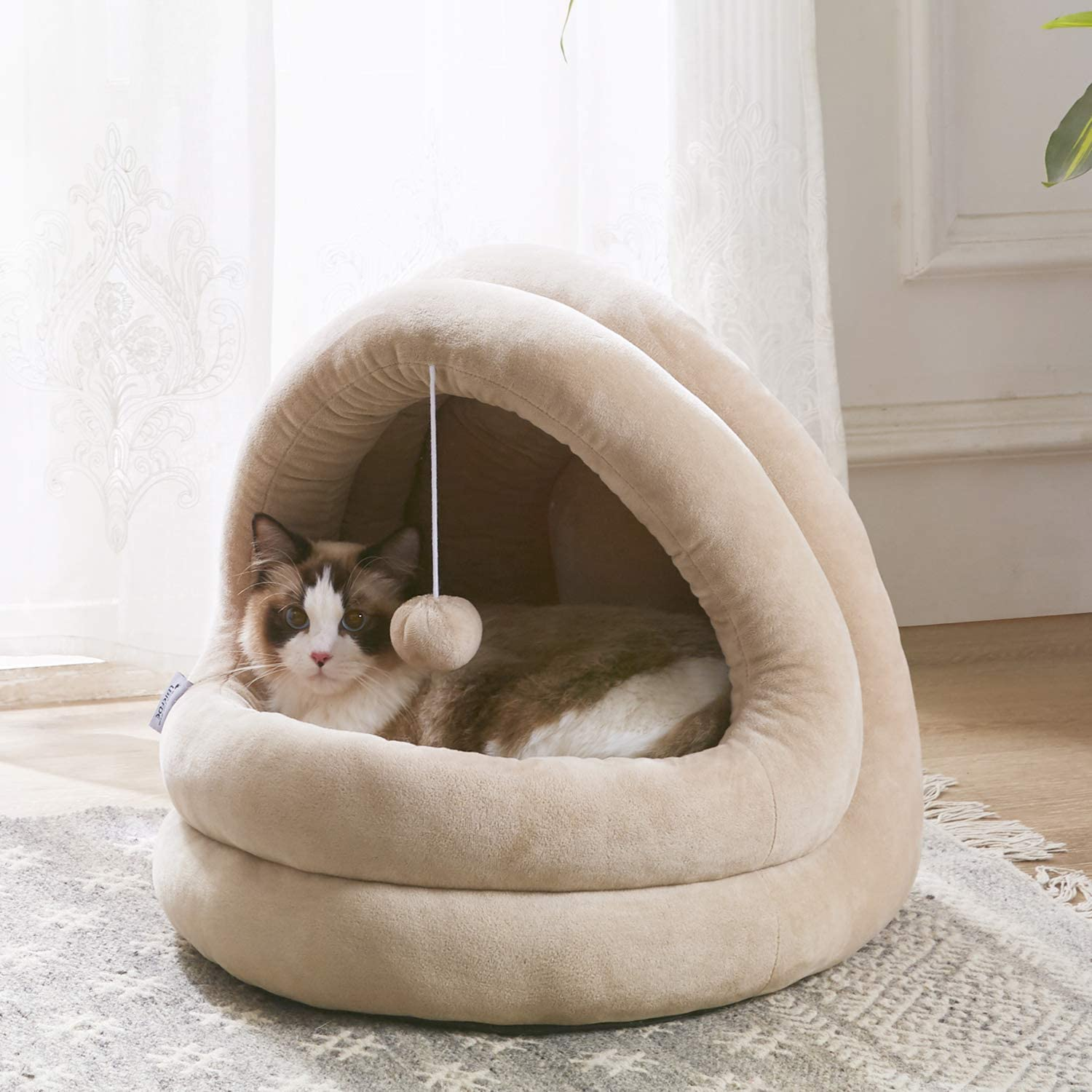 Free Amazon Promo Code 2020 for Cat Bed for Indoor Cats Large