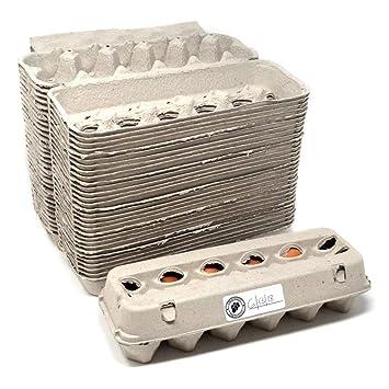 Lote de 30 cajas de huevos en blanco con ventana, 30 etiquetas incluidas, 100% materiales reciclados, fabricadas en América del Norte, paquete de 30: ...