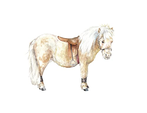 Amazon Com Shetland Pony Horse Print 8 5x11 Watercolor Handmade