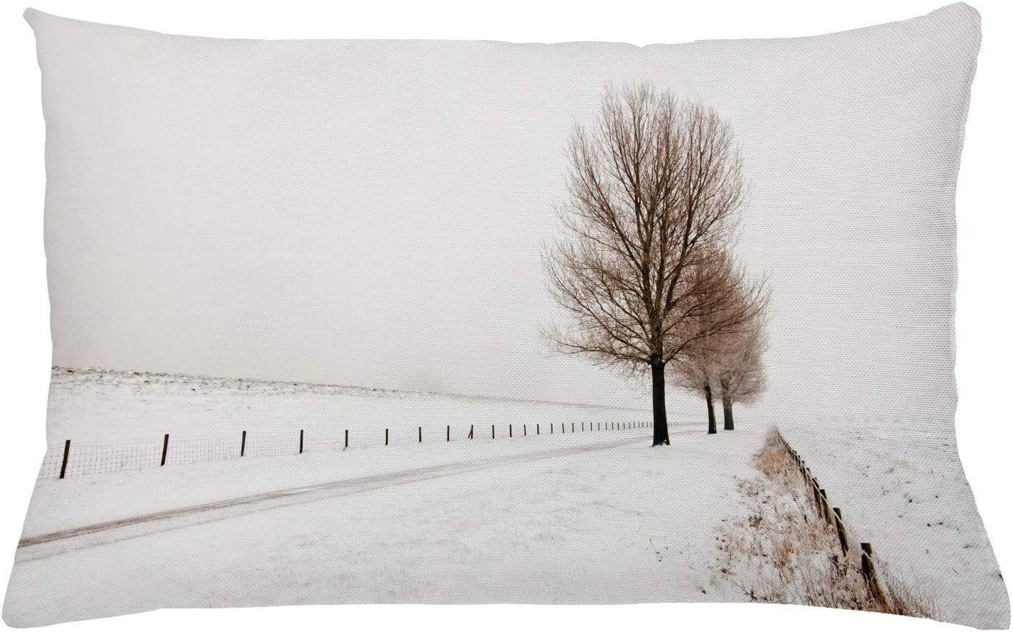 Amazon Com Ambesonne Rustic Throw Pillow Cushion Cover Row Of Large And Bare Beech Trees In Snow Covered Winter Frozen Photography Art Decorative Rectangle Accent Pillow Case 26 X 16 White Brown Home