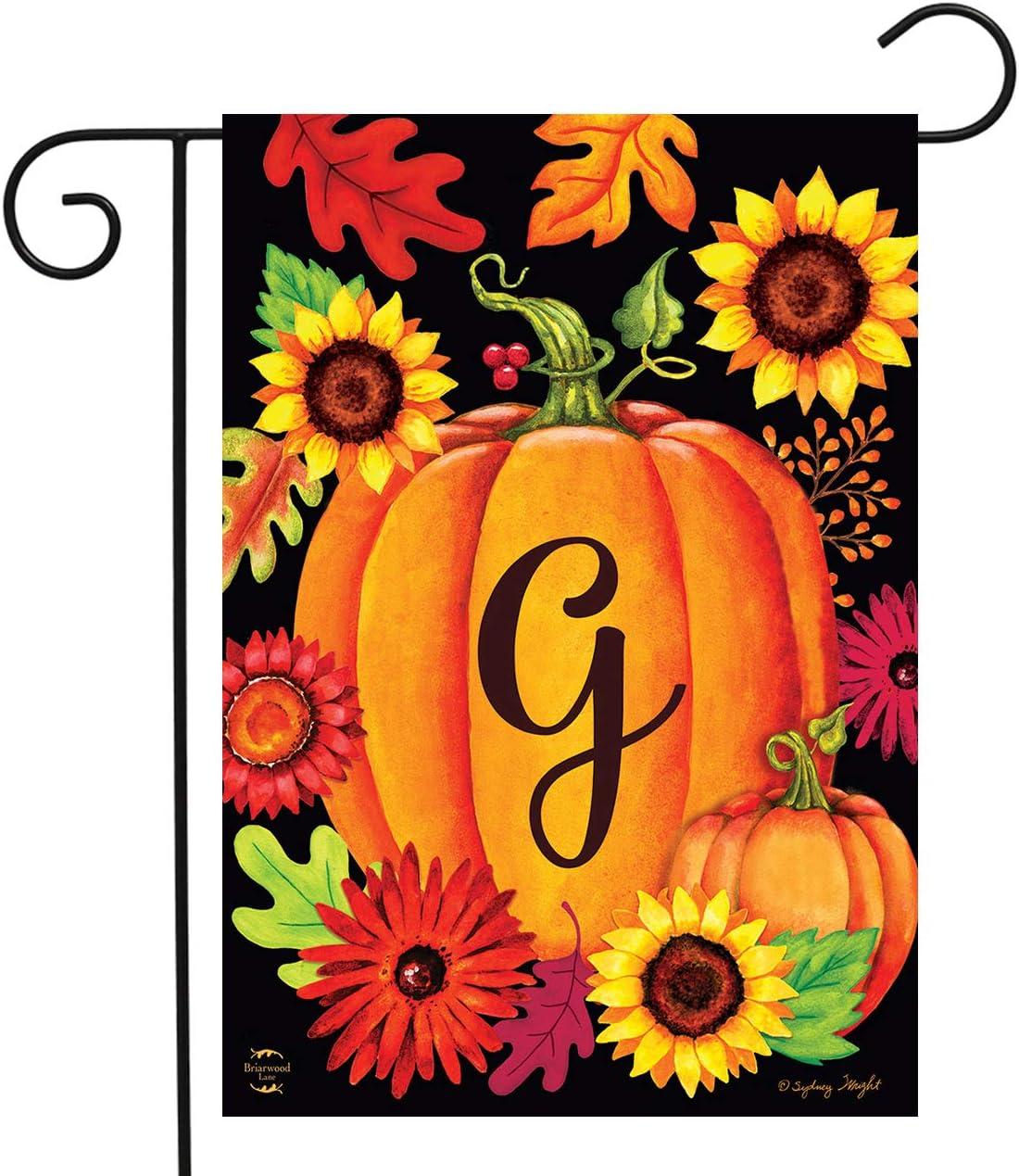 "Briarwood Lane Fall Pumpkin Monogram Letter G Garden Flag 12.5"" x 18"""