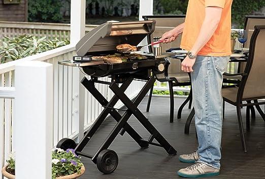 Wonderful Amazon.com: Cuisinart CGG 240 All Foods Roll Away Gas Grill: Garden U0026  Outdoor