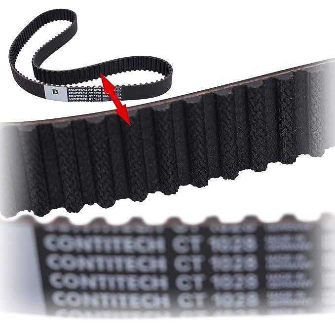 Continental Correa de distribución ct 1028: CONTITECH: Amazon.es: Coche y moto