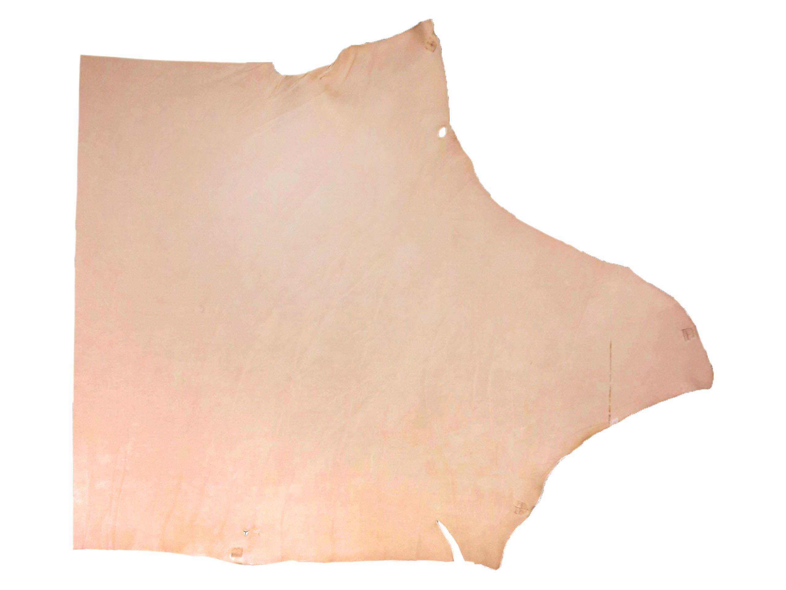 Hermann Oak Vegetable Veg Tan Tooling Cowhide Single Shoulder 8-9 oz 4-6 Sqft