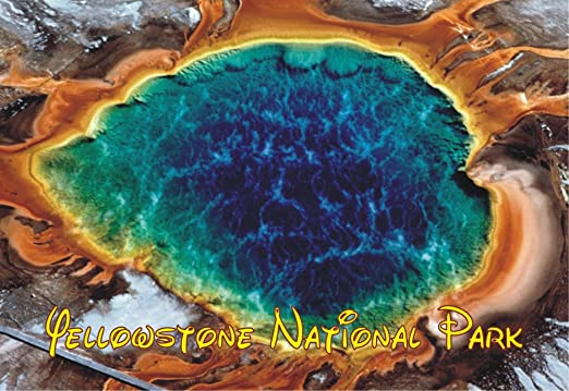 Wyoming BIGHORN NATIONAL FOREST Travel Souvenir Flexible Fridge MAGNET