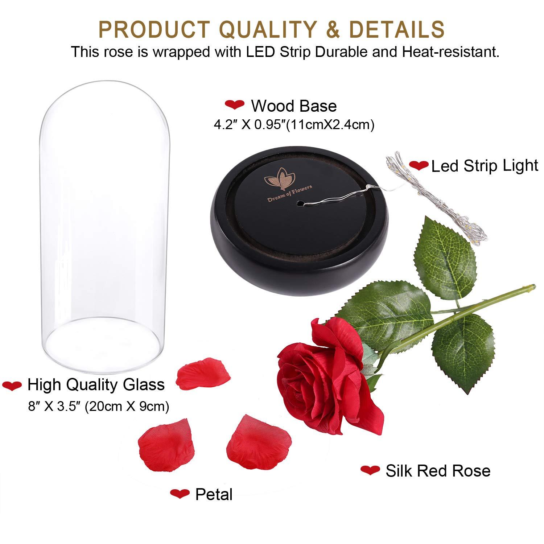 LED Licht Musik Rose Blume Gefallenen Blätter in eine Kuppel Geburtstag Geschenk Weihnachten Valentinstag Hochzeit Dekorationen Romantische Geschenke