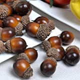 Gresorth 50pcs Artificial Lifelike Simulation Small Acorn Set Decoration Fake Fruit Home House Kitchen Decor