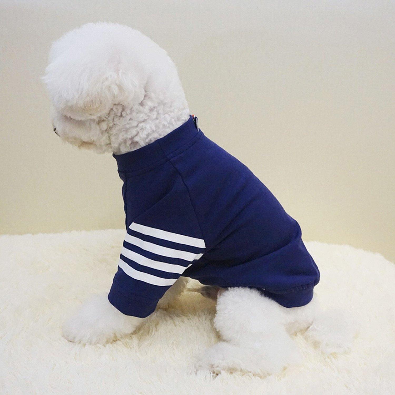 Old Bird - Sudadera de algodón para perro, gato, abrigos para mascotas, cachorro, cachorro, cachorro, chihuahua, cachorro, primavera, cálida sudadera: ...